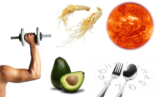 High-Fat Diet Archives - Good Whole Food