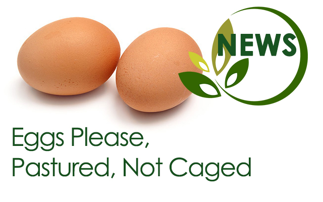 Eggs Please Pastured Not Caged Good Whole Food